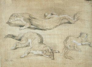 Famous paintings of Squirrels: Ferrets