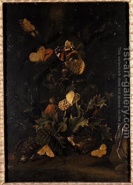 Flowers with butterflies and toad by Johann Christian Thomas Winck - Reproduction Oil Painting