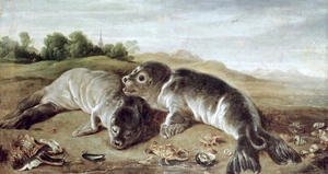 Two Young Seals on the Shore, c.1650