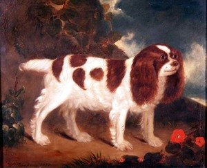 William Thompson reproductions - King Charles Spaniel