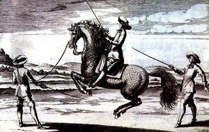 Illustration of a horse en Croupade from New Treatise for Breeding Horses written by Winters, Stuterey and Reit-Schul, pub. 1672