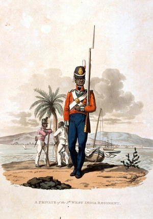 Reproduction oil paintings - Charles Hamilton Smith - A Private of the 5th West India Regiment, from Costumes of the Army of the British Empire, according to the last regulations 1812, engraved by J.C. Stadler, published by Colnaghi and Co. 1812-15