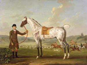 Scipio, Colonel Roches Spotted Hunter, c.1750