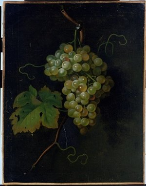 Reproduction oil paintings - Tobias Stranover - Grapes