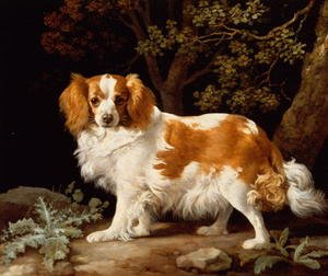 Romanticism painting reproductions: A Liver and White King Charles Spaniel in a Wooded Landscape, 1776