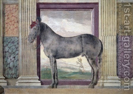 Sala dei Cavalli, detail showing a portrait of Morel Favorito, a horse from the stables of Ludovico Gonzaga III of Mantua, 1528 by Giulio Romano (Orbetto) - Reproduction Oil Painting