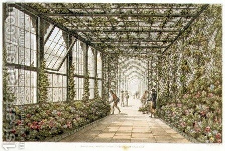 Corridor of a Conservatory, engraved by Joseph Constantine Stadler fl.1780-1812 from Designs for the Pavilion at Brighton, pub. 1808 by Humphry Repton - Reproduction Oil Painting