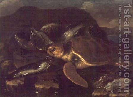 Still Life with a Fish and a Tortoise by Giuseppe Recco - Reproduction Oil Painting