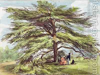The Lebanon Cedar Tree in the Arboretum, Kew Gardens, plate 21 from Kew Gardens A Series of Twenty-Four Drawings on Stone, engraved by Charles Hullmandel 1789-1850 published 1820 by (after) Papendiek, George Ernest - Reproduction Oil Painting