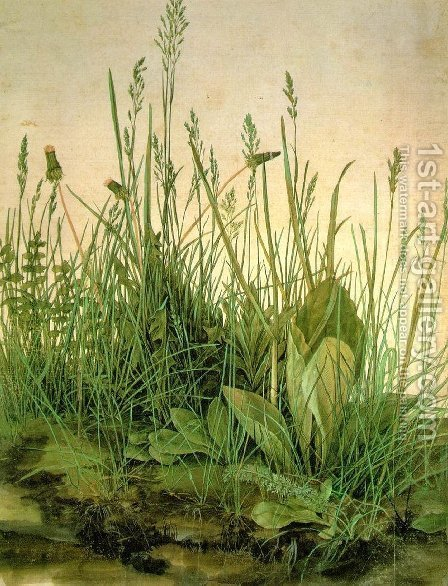 The Large Turf by Albrecht Durer - Reproduction Oil Painting