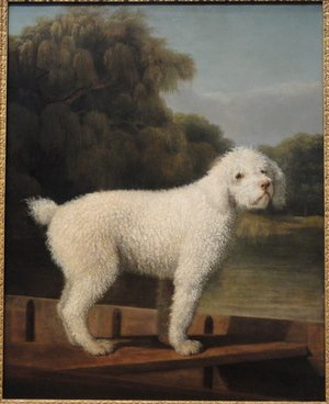 Famous paintings of Ships & Boats: White Poodle in a Punt