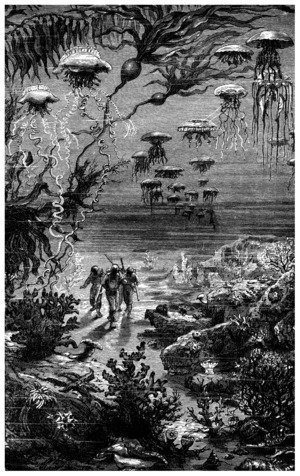 Illustration from 20000 Leagues Under the Sea by Jules Verne