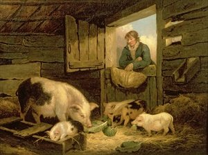 A Boy Looking into a Pig Sty 1794
