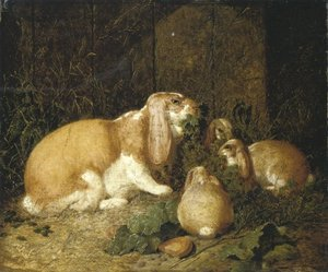 Famous paintings of Domestic Animals: Lop Eared Rabbits 1860