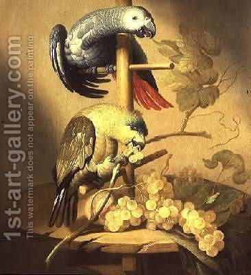 An African Grey and an Orange Winged Amazon Parrot on a Perch with Grapes by Jacob Fransz van der Merck - Reproduction Oil Painting