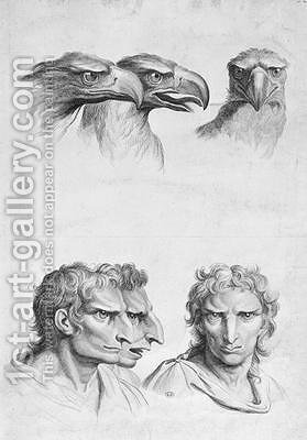Similarities Between the Head of an Eagle and a Man by (after) Le Brun, Charles - Reproduction Oil Painting