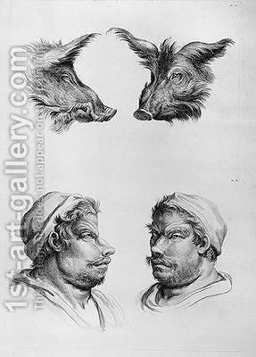 Similarities Between the Head of a Boar and a Man by (after) Le Brun, Charles - Reproduction Oil Painting