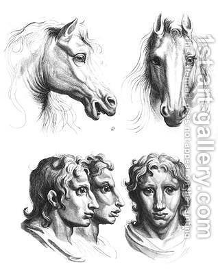 Similarities between the heads of a horse and a man by (after) Le Brun, Charles - Reproduction Oil Painting