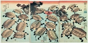 Famous paintings of Turtles: Kinki Myo Myo