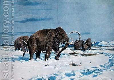 Troop of mammoths in the Ice Age by (after) Kuhnert, Wilhelm - Reproduction Oil Painting