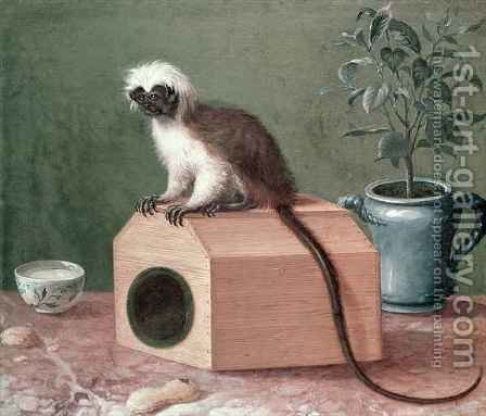 The Favourite Monkey of Carl Linnaeus 1707-78 by Gustavus Hesselius - Reproduction Oil Painting