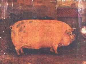 Famous paintings of Domestic Animals: The Prize Pig Jumbo II