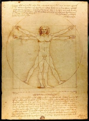 Reproduction oil paintings - Leonardo Da Vinci - Vitruvian Man