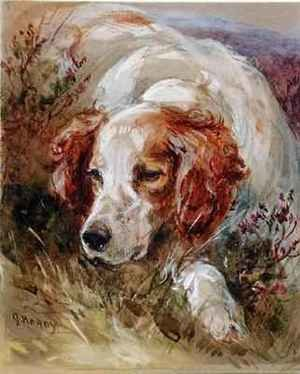 Reproduction oil paintings - James Hardy Jnr - A Spaniel
