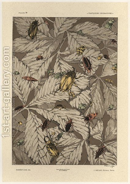 Beetles plate 38 from Fantaisies decoratives by (after) Habert-Dys, Jules-Auguste - Reproduction Oil Painting