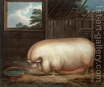 This Remarkable Animal by (after) Gale, Benjamin - Reproduction Oil Painting