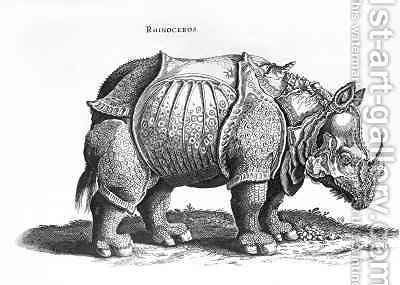 Rhinoceros no76 from Historia Animalium by (after) Durer or Duerer, Albrecht - Reproduction Oil Painting