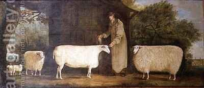 A Shepherd with his Flock by J.D. Curtis - Reproduction Oil Painting