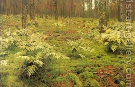 Ferns in a forest 1895 by Isaak Ilyich Levitan - Reproduction Oil Painting