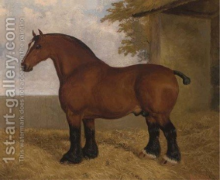 The shire stallion by A. Clark - Reproduction Oil Painting