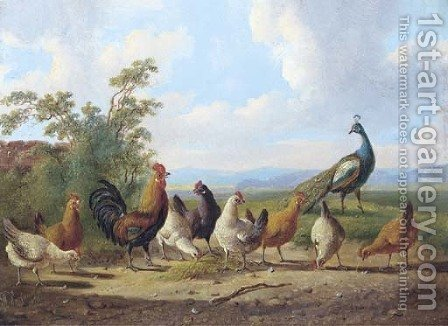 Cheerful chickens by Albertus Verhoesen - Reproduction Oil Painting