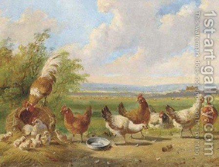 Poultry in a landscape by Albertus Verhoesen - Reproduction Oil Painting