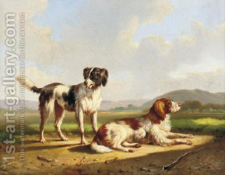 Two hunting dogs in a summer landscape by Albertus Verhoesen - Reproduction Oil Painting