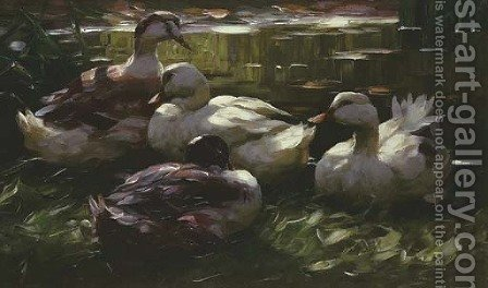 Vier Enten Am Wasser by Alexander Max Koester - Reproduction Oil Painting