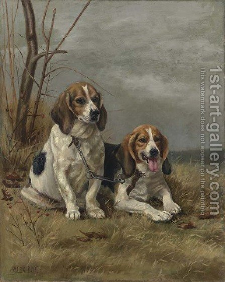 Two Hounds by Alexander Pope - Reproduction Oil Painting