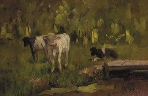 Reproduction oil paintings - Anton Mauve - Calves in a meadow - a study