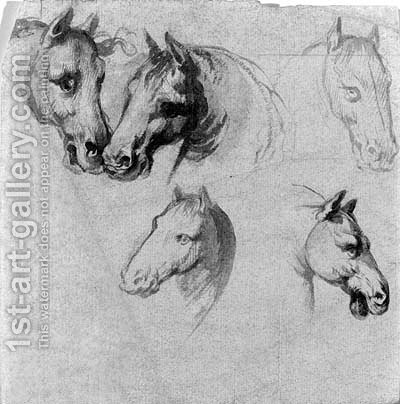 Studies of horses' heads by (after) Belisario Corenzio - Reproduction Oil Painting