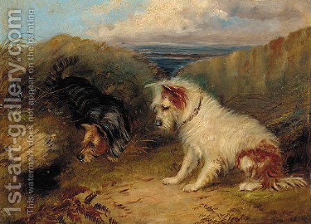 Terriers by a rabbit hole by (after) George Armfield - Reproduction Oil Painting