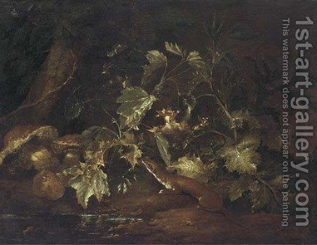 A forest floor still life with a stoat beside a pool by (after) Paolo Porpora - Reproduction Oil Painting
