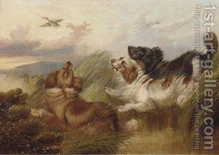 Spaniel putting a mallard up by (after) Paul Jones - Reproduction Oil Painting