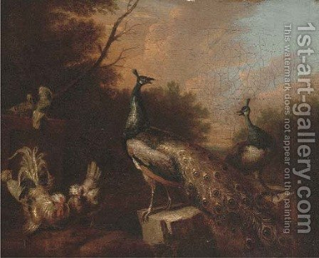 Peacocks and chickens in a landscape by (after) Pieter Casteels III - Reproduction Oil Painting