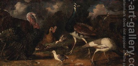 Peacocks with a Turkey, Chicken and Poults with a Goldfinch in a Landscape by (after) Tobias Stranover - Reproduction Oil Painting