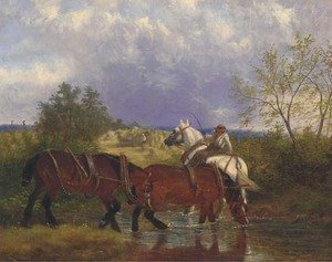 Work horses drinking from a brook