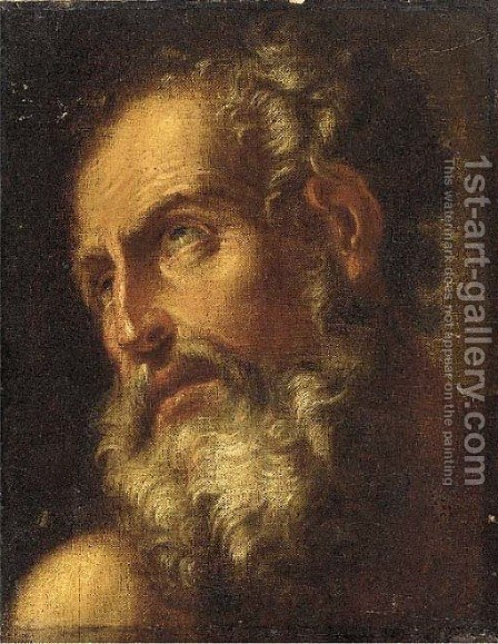 An old man, head and shoulders by (after) Antonio Zanchi - Reproduction Oil Painting