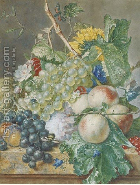 Still life of grapes, peaches, plums and other fruit with peonies, chrysanthemums and convolvulus, on a marble ledge by (after) Huysum, Jan van - Reproduction Oil Painting