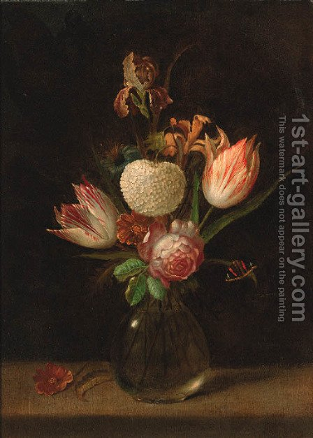 Parrot tulips, a chrysanthemum, a rose, an iris and other flowers by (after) Rachel Ruysch - Reproduction Oil Painting